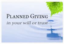 planned giving in a nutshell books american gongyo