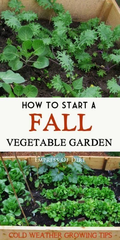 Vegetable Garden 101 Fall Vegetable Gardening 101 Cold Weather Get Started