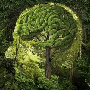 finding humans in nature surreal cerebral trees