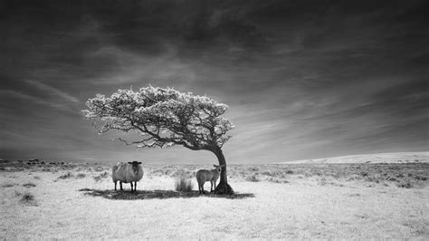 Landscape Photography Of The Year Exhibition Refuge Commended Landscape Photographer Of The Year 201