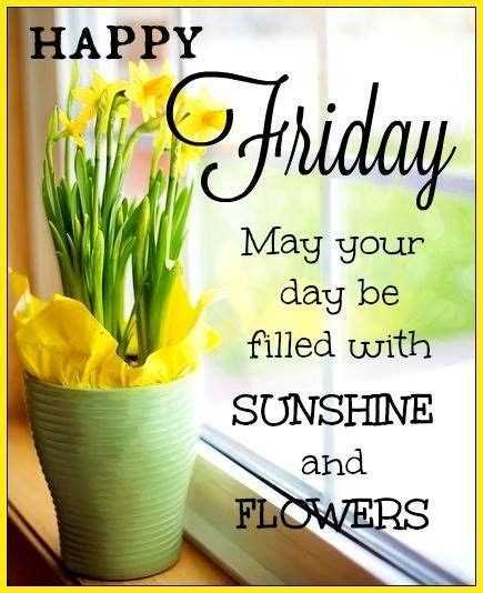 sunshine  flower happy friday quote pictures