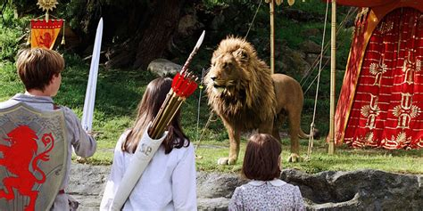 film lion the witch and wardrobe film the chronicles of narnia the lion the witch and