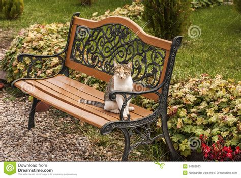 garden sitting bench garden sitting bench 28 images objects of design 89 blooming bench mad about the