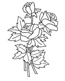 roses coloring pictures coloring pages of roses coloring pages to print