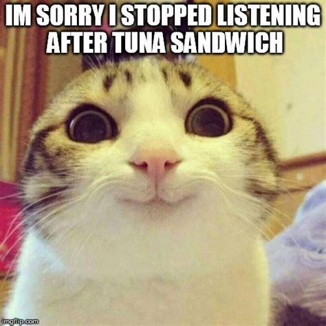 Sorry Meme - smiling cat meme imgflip