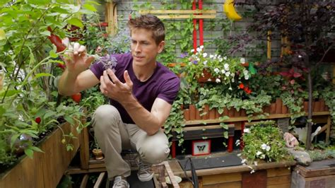 tiny williamsburg hipster garden urban gardener video