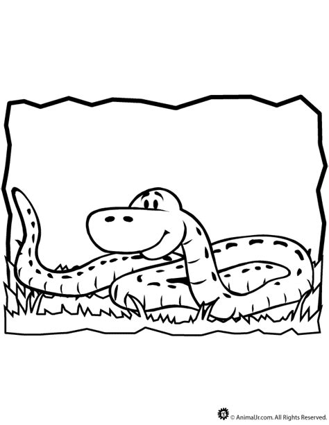 ball python coloring pages
