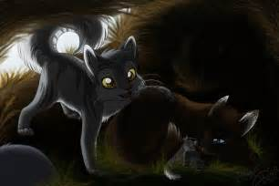 1000 images about warrior cats on pinterest warrior cats