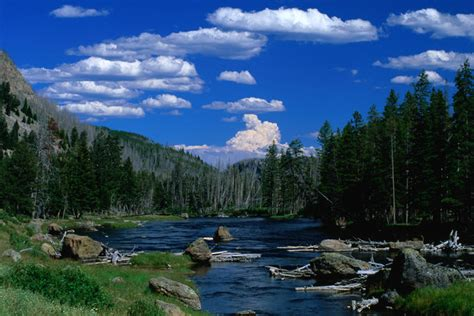 top 10 scenic drives usa lonely planet top scenic drives around yellowstone national park