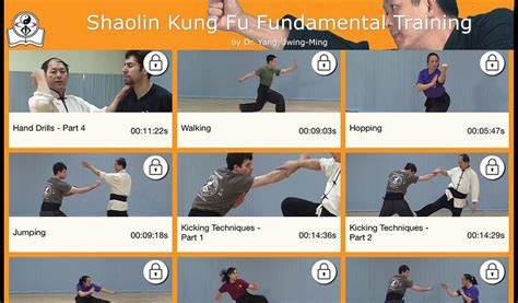 shaolin kung fu android apps on play