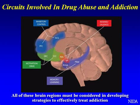 addiction diagram complementary and alternative medicine methods in