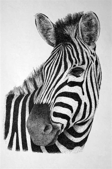 zebra tattoo pen zebra drawing by rens ink