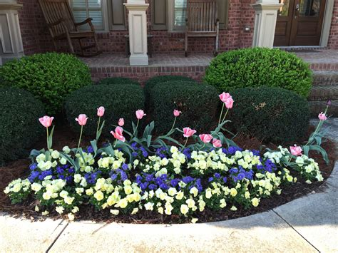 Pansy Garden Ideas Pansy Garden Ideas Landscaping Ideas With Pansies Pdf