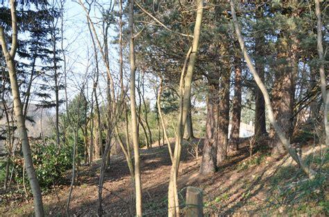 Vente TERRAIN A BATIR CHARBONNIERES CENTRE 1100 M² Immobilier Ecully Régie Ouest Lyonnais