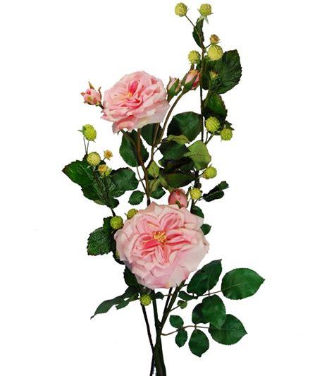 nomi di fiori in inglese rosa inglese fiori e piante artificiali fiori
