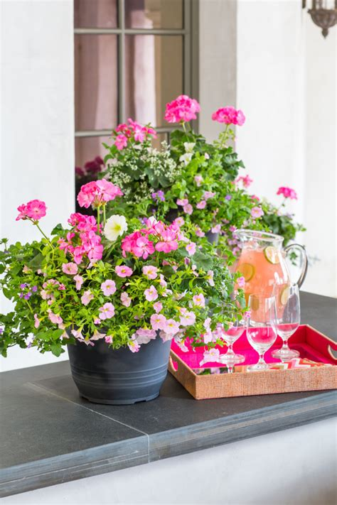 southern living container gardening tips for potted flowers and the southern living
