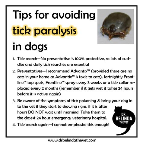tick paralysis in dogs dogs tick paralysis breeds picture