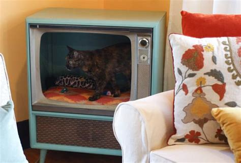 diy cat beds purr fect diy cat and dog bed ideas bite sized biggie