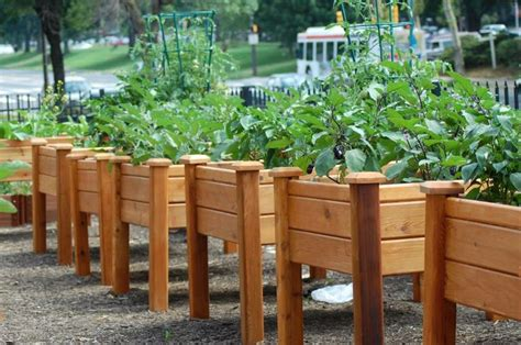 Elevated Raised Garden Beds by Gronomics Elevated Garden Beds Universal Design In The