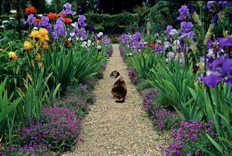 Monet Gardens by Plein Air Paint In Monet S Garden With Lori Mcnee