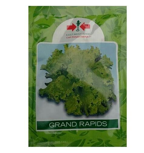 Benih Pare Cap Panah Merah benih selada grand rapids panah merah jualbenihmurah