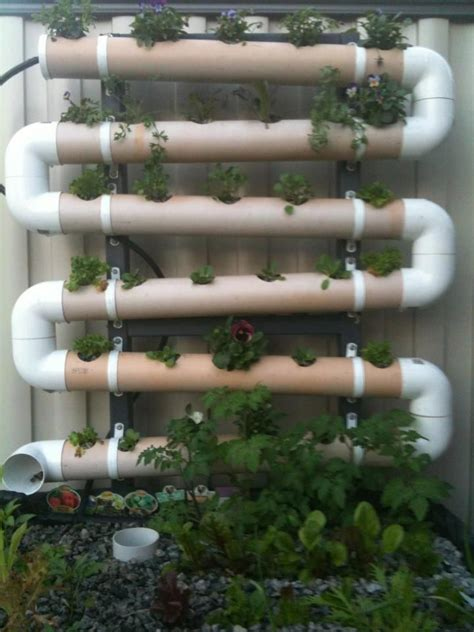 vertical pvc pipe vegetable garden 17 best creative aquaponics setups images on pinterest