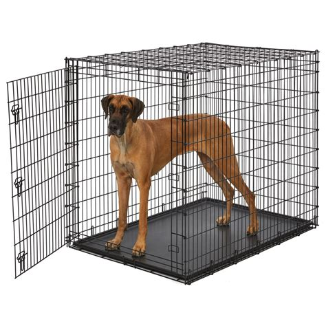 solutions series extra large dog crate single door