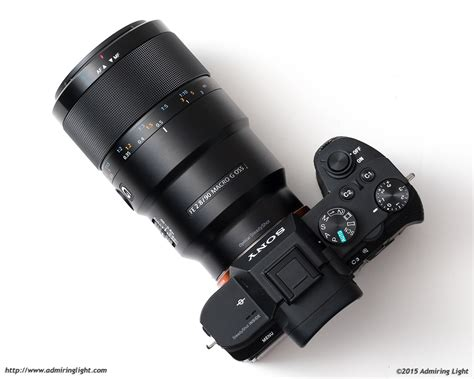Sony 90mm F 2 8 Macro G Oss review sony fe 90mm f 2 8 macro g oss admiring light