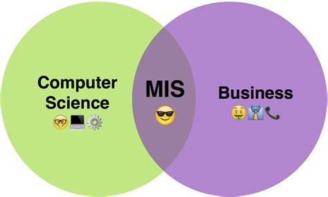 What Is An Mba In Mis explain the of mis in business