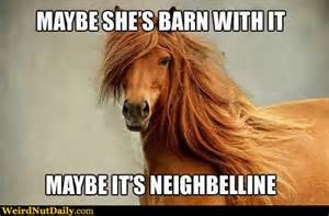 Barn Ol Funny Pictures Weirdnutdaily Maybe It S Neighbelline