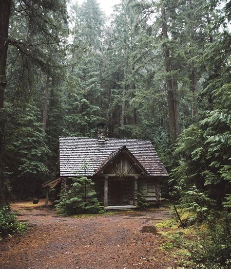 vintage homes of the northwest books 25 best ideas about forest cabin on cabin