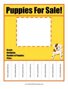 puppy for sale flyer templates puppies for sale flyer