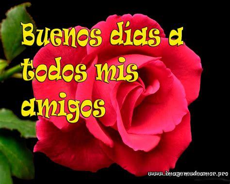 imagenes de rosas buenos dias imagenes de buenos dias rosas de buenos dias memes