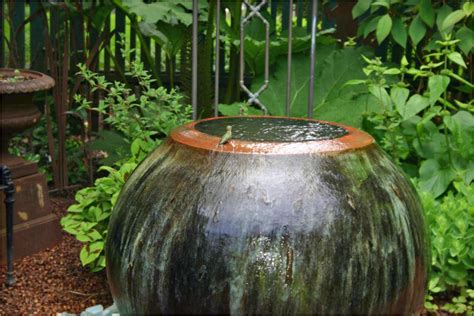 Black Gold Garden Water Features and Carnivorous Plants