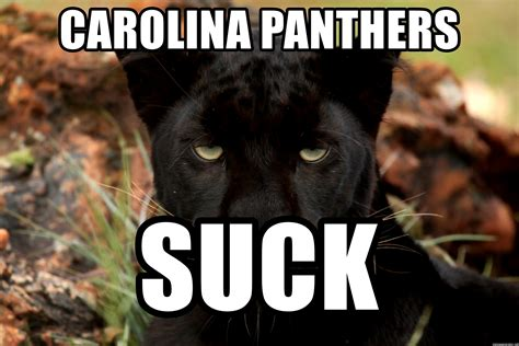 Panthers Suck Meme - carolina panthers suck amused panther meme generator