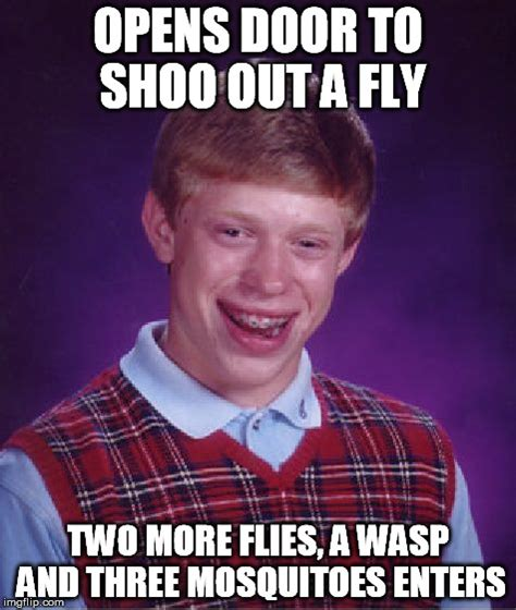 Fly Out Memes - save the animals imgflip