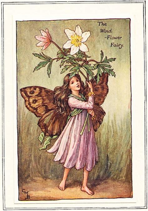 the fairy blog the cicely mary barker flower fairies site
