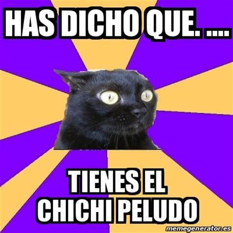 Anxiety Cat Meme Generator - meme anxiety cat has dicho que tienes el chichi