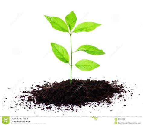soil clipart clipart suggest