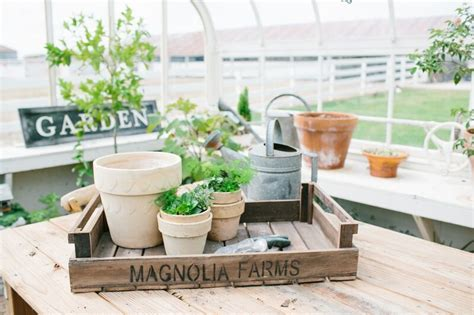 where is magnolia farms magnolia farms tray magnolia market