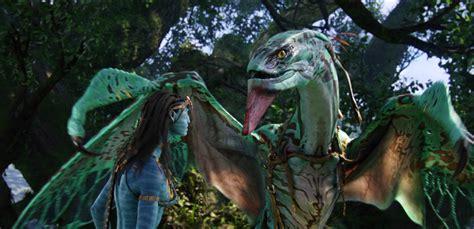 draghi volanti i draghi volanti di avatar sono esistiti davvero gqitalia it