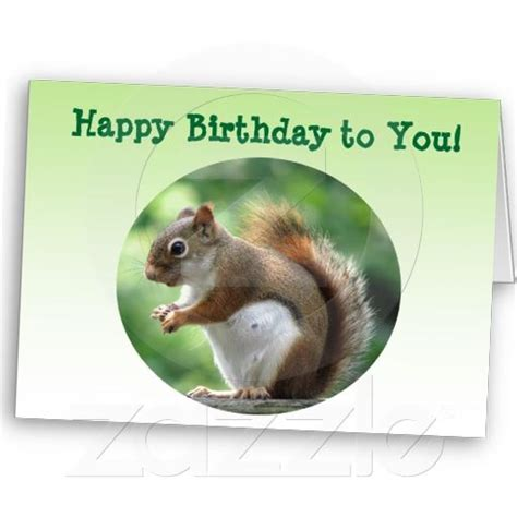 printable birthday cards with squirrels 23 best images about squirrels on pinterest sprinkle