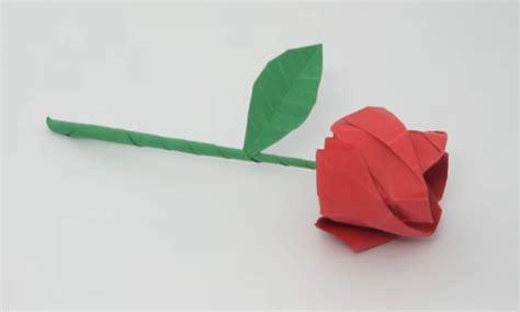 gambar  gambar sketsa bunga pensil mudah dibuat mawar