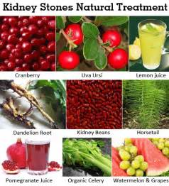home remedies world herbal treatment to cure kidney diseases