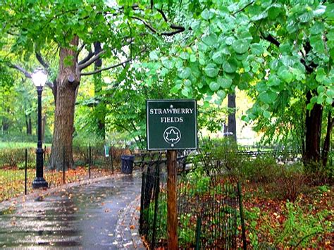 Mystery Island Kitchen by Ny Strawberry Fields In The Rain Central Park I Photo