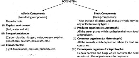short note on design for environment our environment cbse notes for class 10 science learn cbse