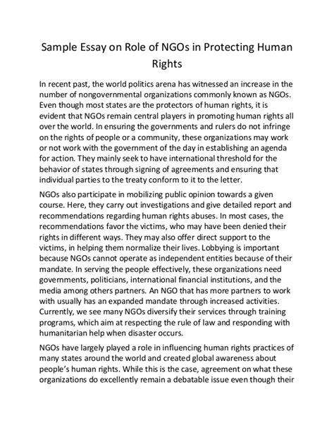 Human Rights In Malaysia Essay by Sle Essay On Of Ng Os In Protecting Human Rights