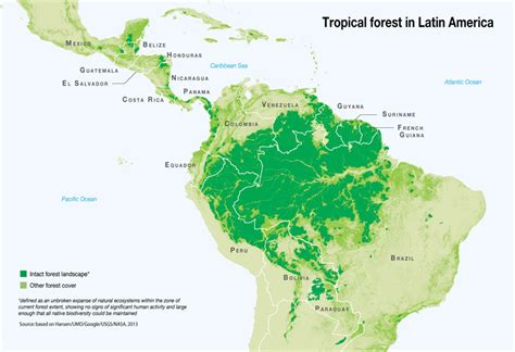 america rainforest map overview listen to the
