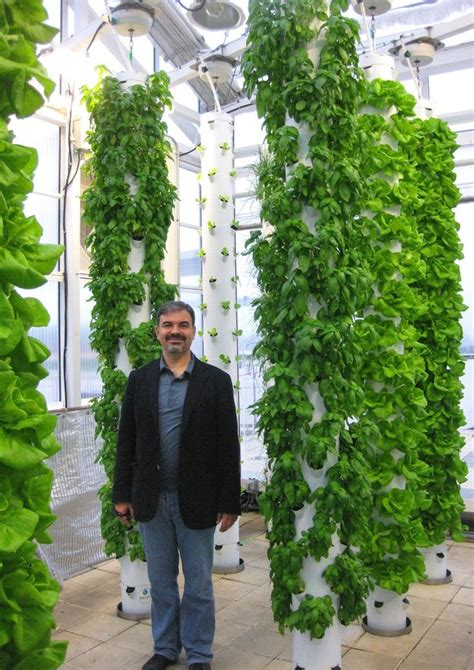 Aeroponic Tower Garden by 24 Best Aeroponics Tower Garden Images On Farms Garden And Gardening