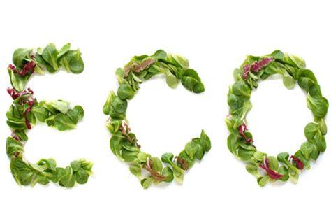 alimentos ecologicos por  consumirlos beneficios  propiedades viviendosanoscom